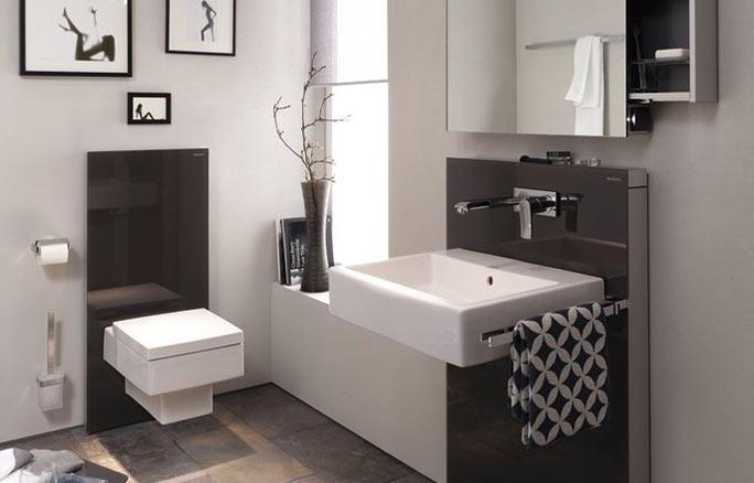 GEBERIT Bathroom Emco Monolith umbra